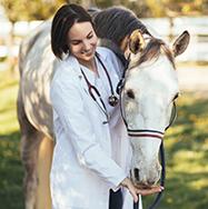 Tierärztin mit Pferd