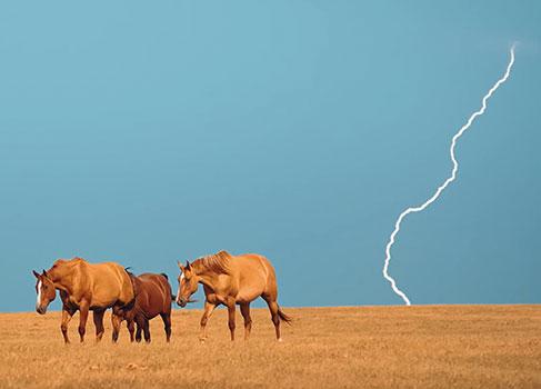 Blitz über dem Feld
