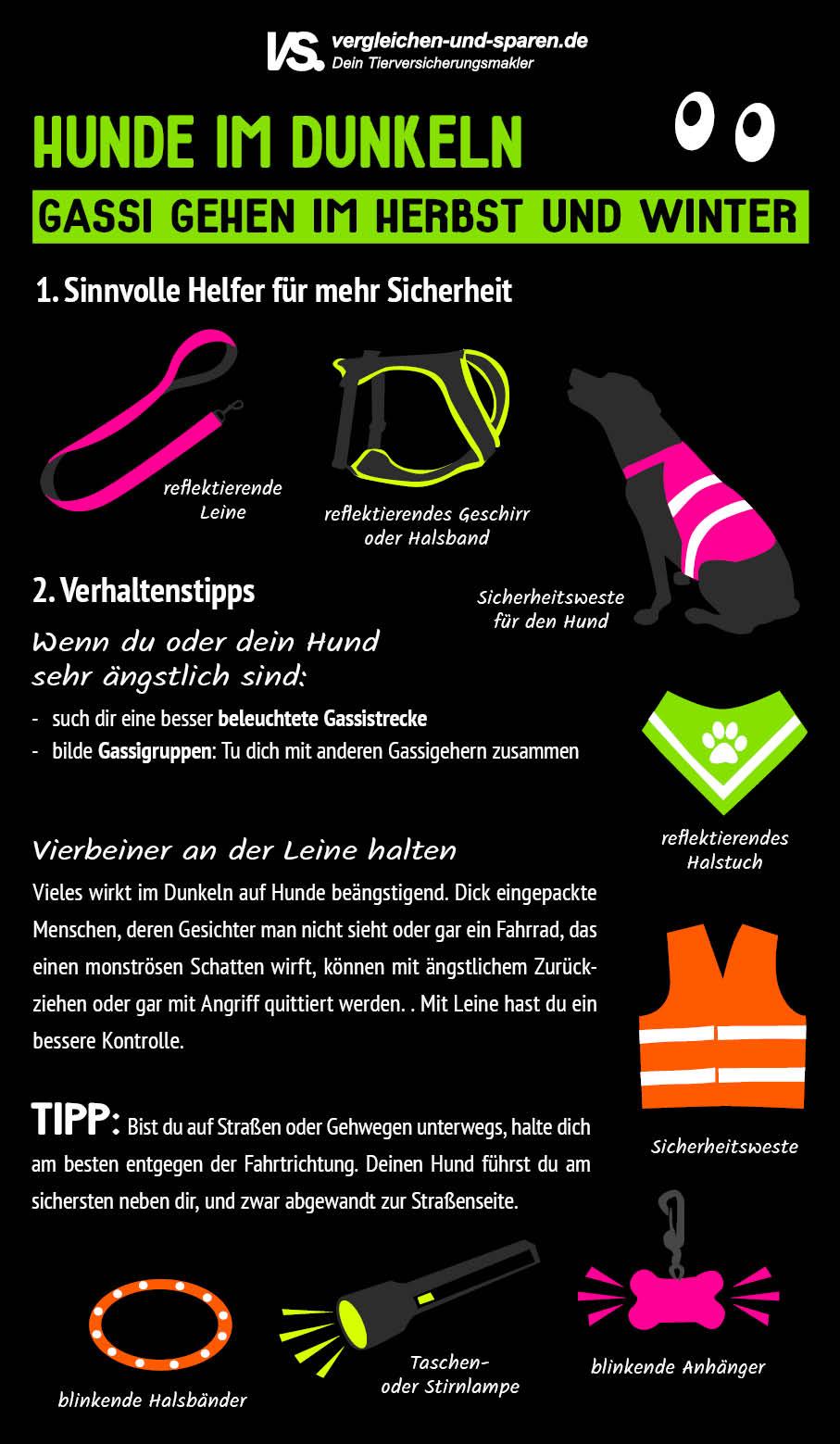 Infografik: Tipps für das Gassi gehen im Dunkeln