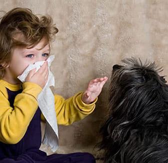 Kleines Mädchen mit Hundehaarallergie