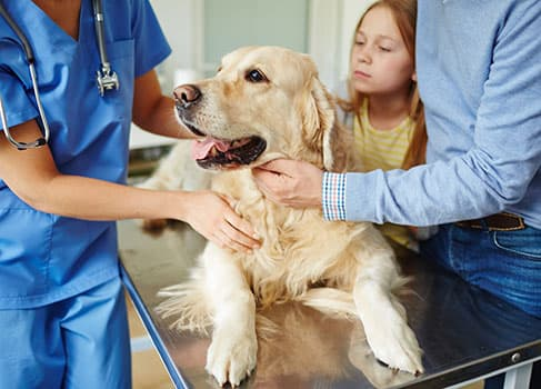 Familie mit dem Hund beim Tierarzt