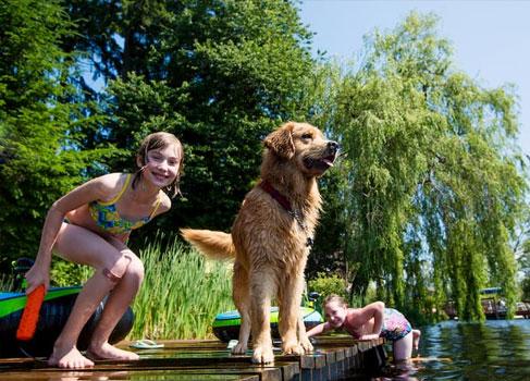 Kinder spielen mit dem Hund am See