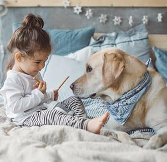 Kleines Mädchen füttert den Hund