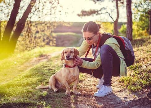 mit Hund spazieren