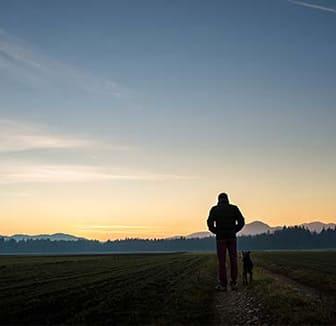 Hund und Herrchen in der Dunkelheit