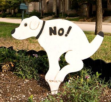 Schild - Hundehaufenverbot
