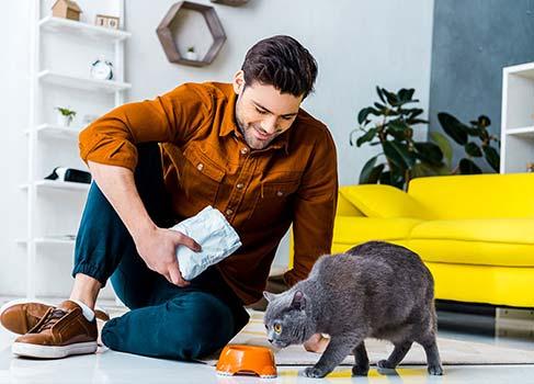 Mann füttert seine Katze