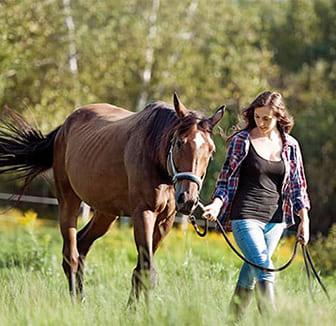 Pferdebesitzerin