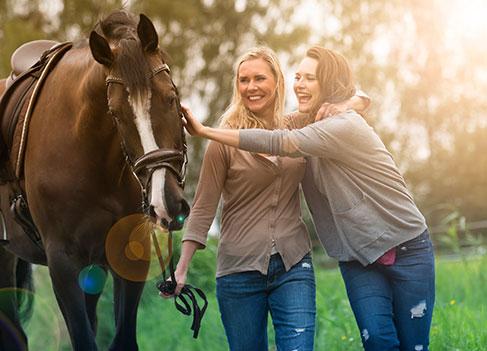 Pferd mit Reitbeteiligung