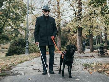 Blinder Mensch mit geht mit deinem Assistenzhund im Park spazieren