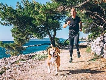 Hund und Herrchen beim Canicross