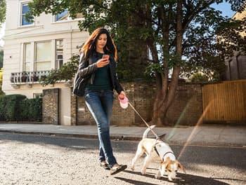 Frau beim Gassi gehen mit dem Handy in der Hand