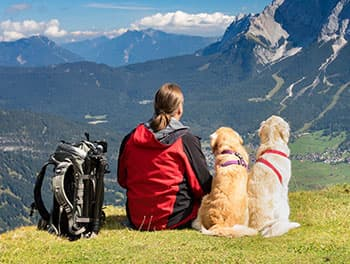 Wanderung mit zwei Hunden in den Bergen
