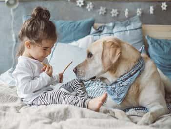 Kleines Mädchen füttert den Hund mit Salzstangen
