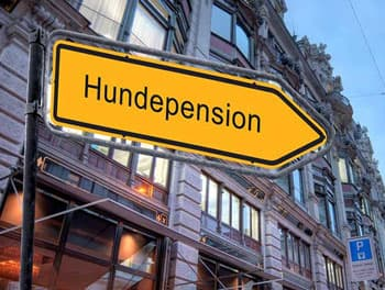 Schild Hundepension