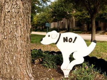Schild mit Verbot für Hunde