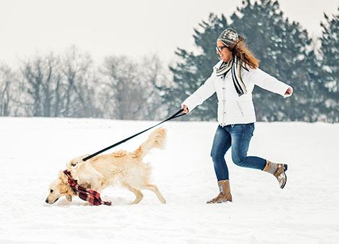 Spaziergang mit Hund im Schnee