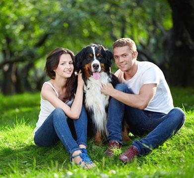 Junges Paar mit dem Hund