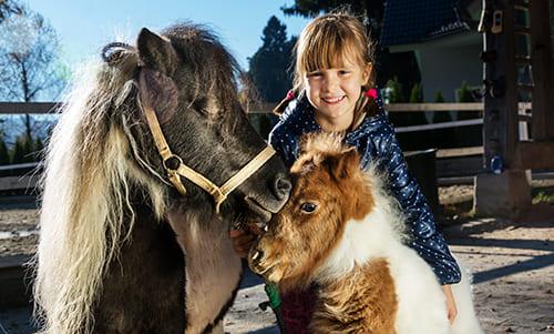 Mädchen streichelt Ponys