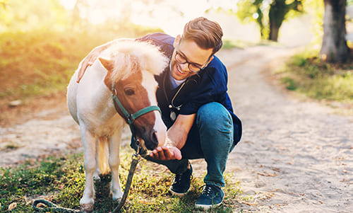 Mann geht mit dem Pony spazieren